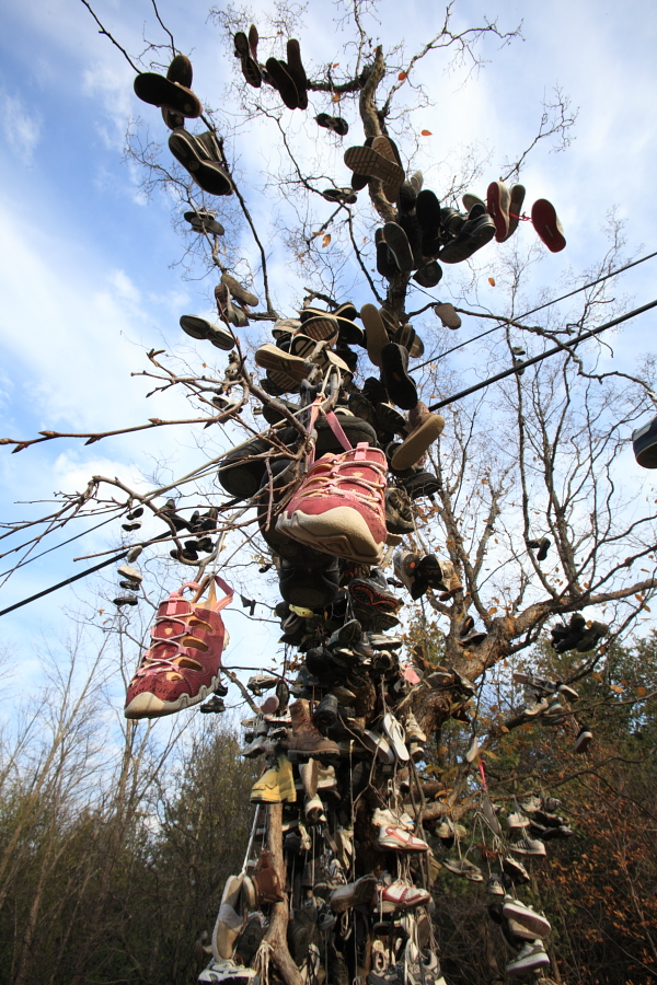 shoe tree, port bolster