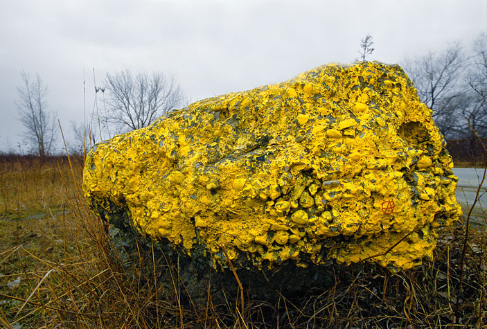 big yellow rock