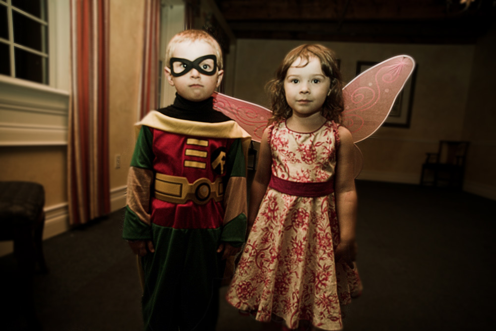 fairy and robin