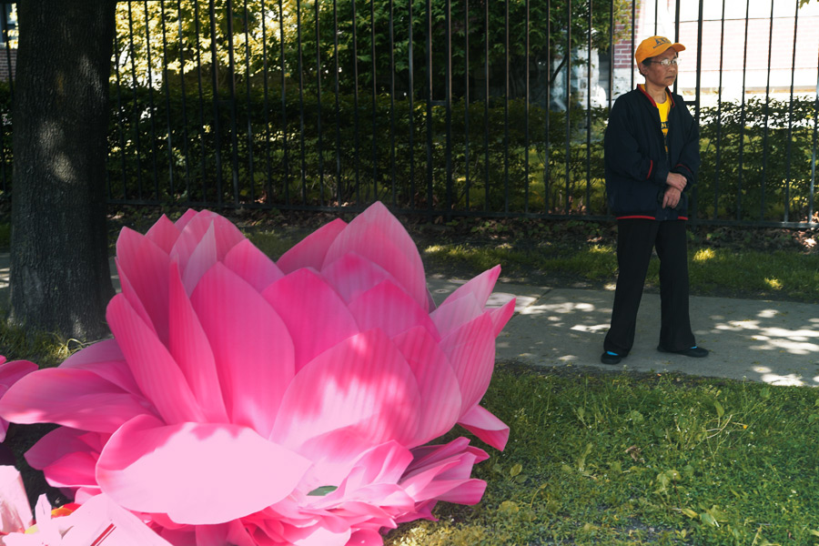a person and a large pink flower