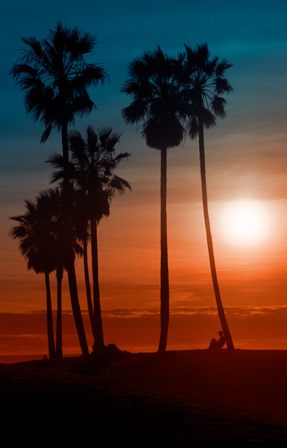 sunset, venice ca